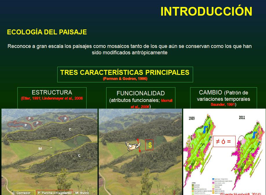 Lineamientos para el manejo de la conectividad de paisajes de alta montaña…